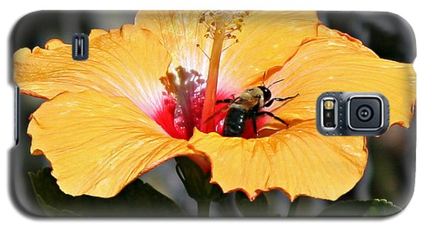 Flower Bee Galaxy S5 Case