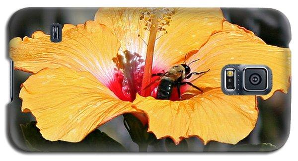 Flower Bee Galaxy S5 Case