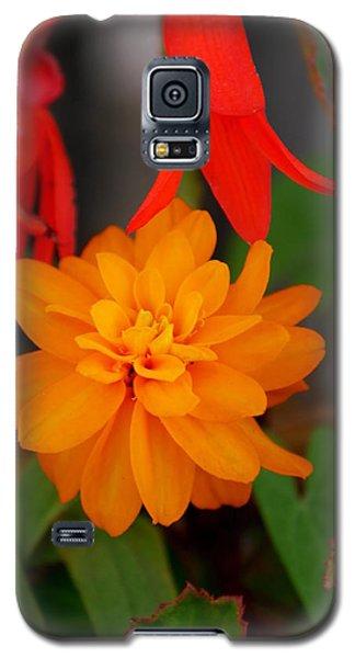 Galaxy S5 Case featuring the photograph Flower by Bernd Hau