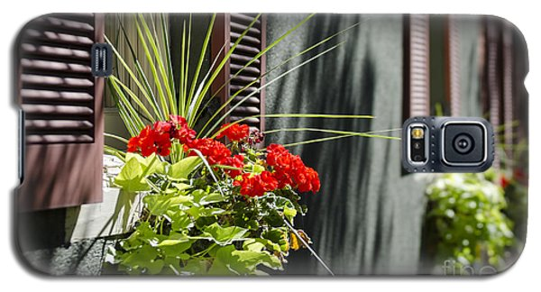 Galaxy S5 Case featuring the photograph Flower Box by Andrea Silies