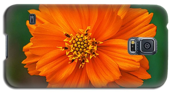 Flower Color Galaxy S5 Case