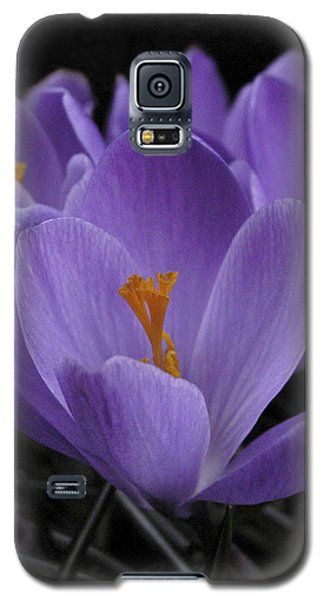 Galaxy S5 Case featuring the photograph Flower Crocus by Nancy Griswold