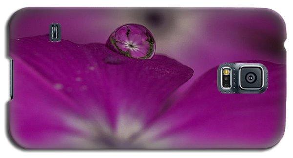 Flower Drop Galaxy S5 Case