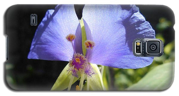 Galaxy S5 Case featuring the photograph Flower Face by Felipe Adan Lerma