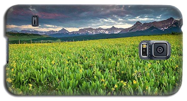 Flower Field And Sneffels Range Galaxy S5 Case