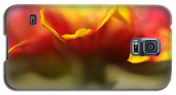 Flower Impressions II Galaxy S5 Case