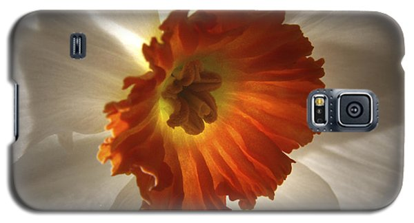 Galaxy S5 Case featuring the photograph Flower Narcissus by Nancy Griswold