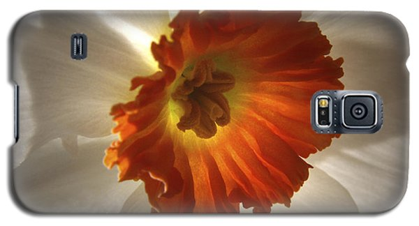 Flower Narcissus Galaxy S5 Case