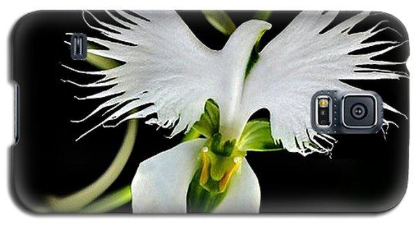 Flower Oddities - Flying White Bird Flower Galaxy S5 Case