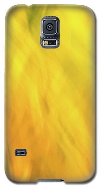 Flower Of Fire 2 Galaxy S5 Case