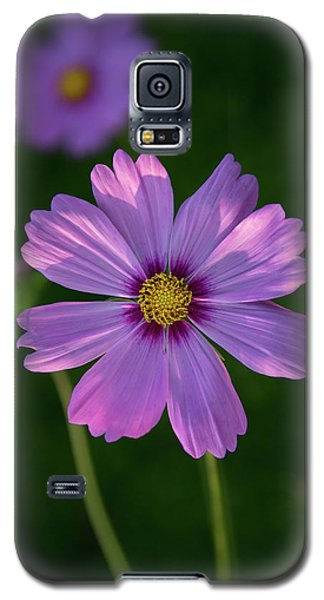 Galaxy S5 Case featuring the photograph Flower Of Love by Dale Kincaid