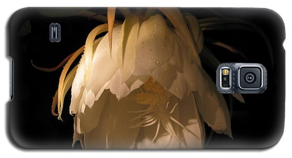 Flower Of The Night 02 Galaxy S5 Case