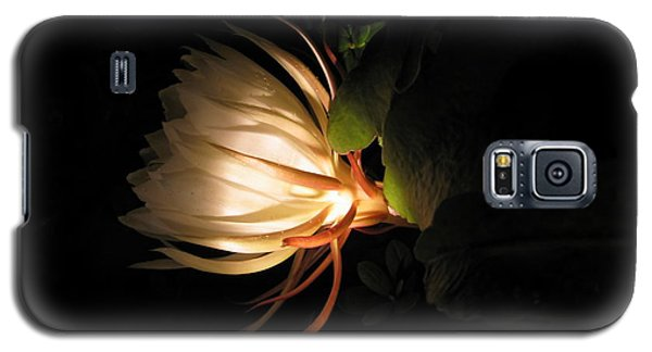 Flower Of The Night 03 Galaxy S5 Case