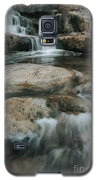 Galaxy S5 Case featuring the photograph Flower Park by Iris Greenwell