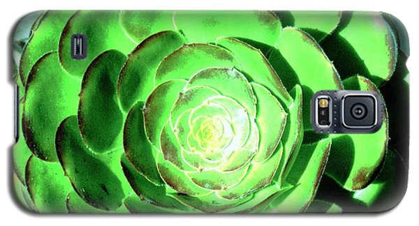 Flower Pattern Of Life Galaxy S5 Case by Vanessa Palomino