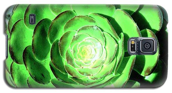 Flower Pattern Of Life Galaxy S5 Case