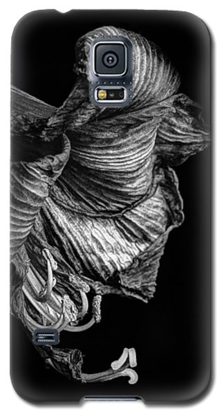 Amaryllis Galaxy S5 Case