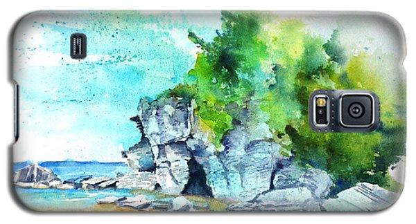 Flower Pot Island Galaxy S5 Case