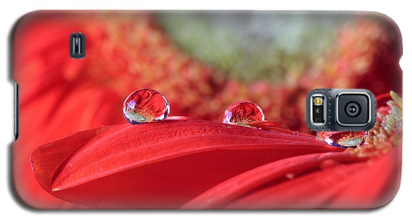 Flower Reflections Galaxy S5 Case by Angela Murdock