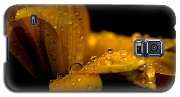 Flower Galaxy S5 Case by Sylvie Leandre