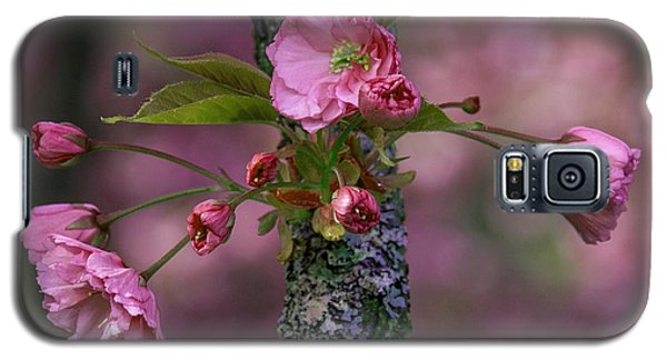 Flowering Almond Iv Galaxy S5 Case