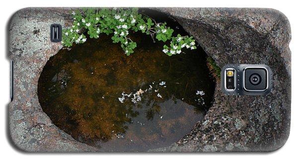 Flowering Bush Galaxy S5 Case