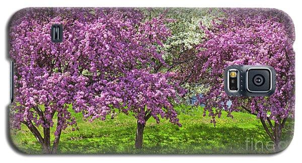 Flowering Crabapples Galaxy S5 Case