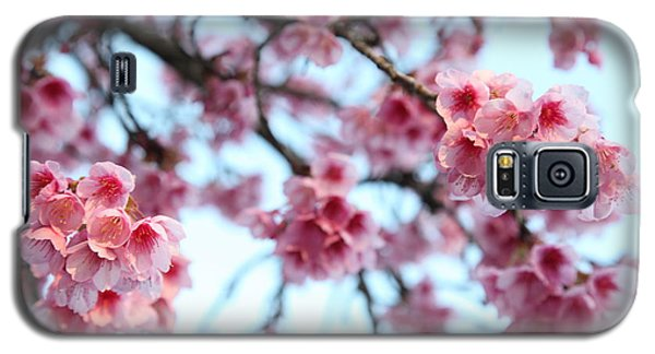 Galaxy S5 Case featuring the photograph flowering of the almond tree, Jerusalem by Yoel Koskas