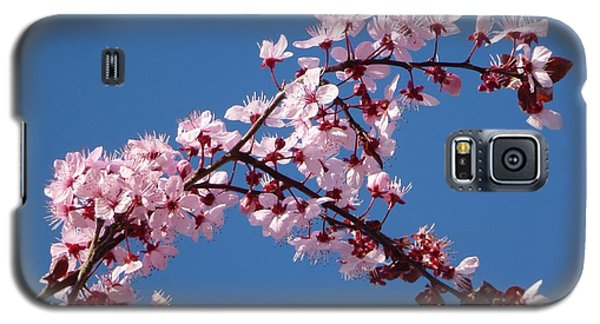 Flowering Of The Plum Tree 4 Galaxy S5 Case by Jean Bernard Roussilhe