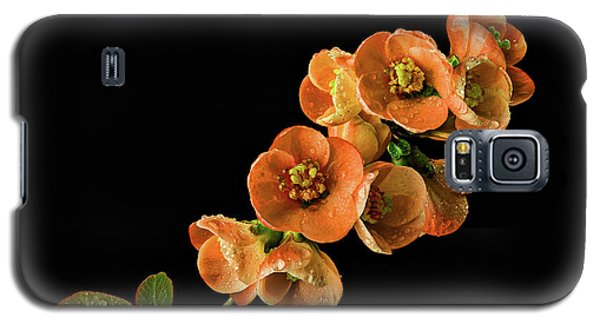 Galaxy S5 Case featuring the photograph Flowering Quince Orange by Mary Jo Allen