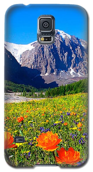 Flowering Valley. Mountain Karatash Galaxy S5 Case