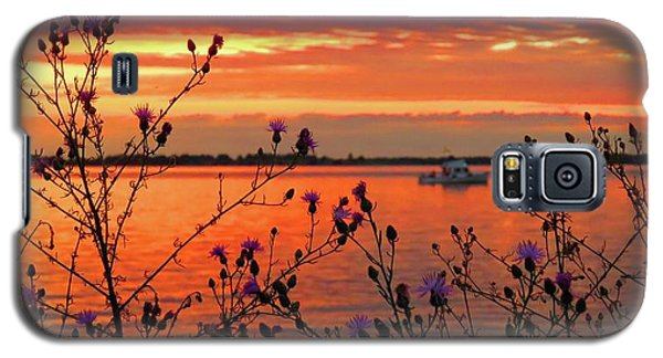 Flowers Along The Shore At Tibbetts Point  Galaxy S5 Case