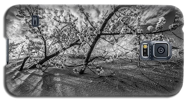 Galaxy S5 Case featuring the photograph Flowers And Dunes Black And White  by John McGraw