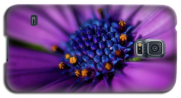 Galaxy S5 Case featuring the photograph Flowers And Sand by Darren White