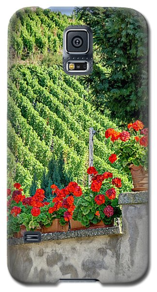 Flowers And Vines Galaxy S5 Case by Alan Toepfer