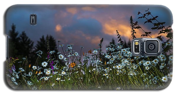 Flowers At Sunset Galaxy S5 Case