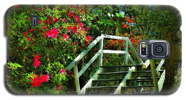 Flowers Bloom Alongside Magnolia Plantation Bridge - Charleston Sc Galaxy S5 Case