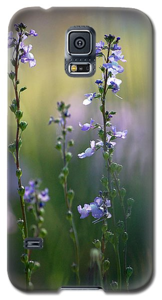 Flowers By The Pond Galaxy S5 Case by Robert Meanor