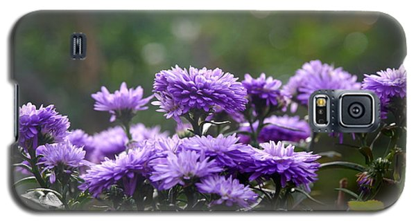 Galaxy S5 Case featuring the photograph Flowers Edition by Bernd Hau