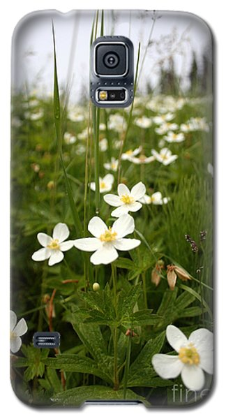 Flowers Everywhere Galaxy S5 Case