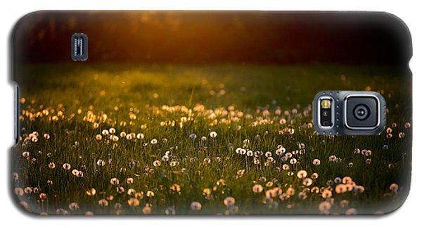 Flowers  Galaxy S5 Case by Evgeny Vasenev