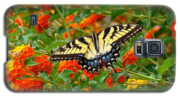 Flowers For Butterflies Galaxy S5 Case by Sue Melvin