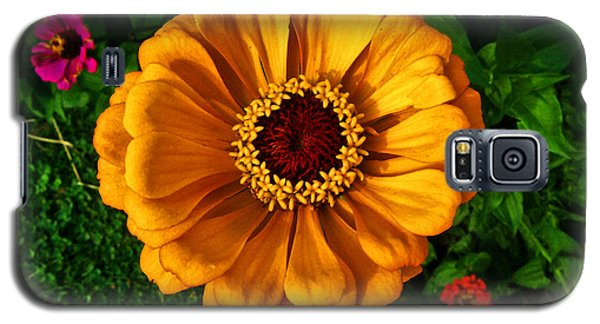 Galaxy S5 Case featuring the photograph Flowers In A Flower 005 by George Bostian