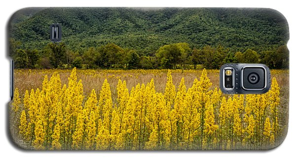 Galaxy S5 Case featuring the photograph Flowers In Cades Cove by Tyson Smith
