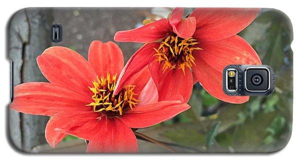 Flowers In Love Galaxy S5 Case