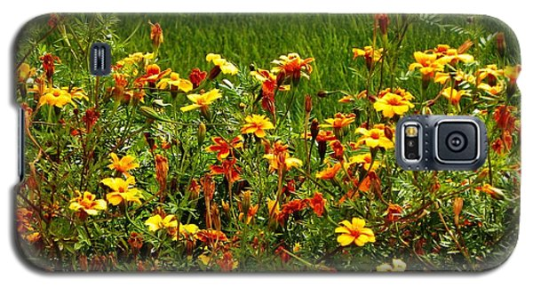 Galaxy S5 Case featuring the photograph Flowers In The Fields by Joseph Frank Baraba