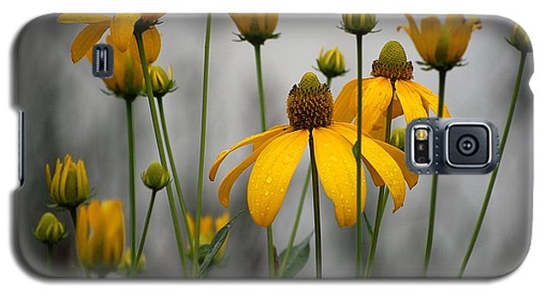 Flowers In The Rain Galaxy S5 Case by Robert Meanor