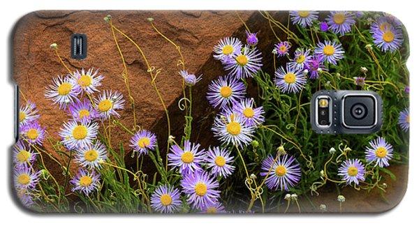 Flowers In The Rocks Galaxy S5 Case by Darren White