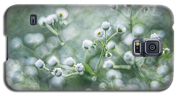 Flowers Galaxy S5 Case by Jaroslaw Grudzinski