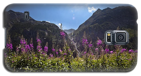 Flowers Line Galaxy S5 Case by Marco Missiaja